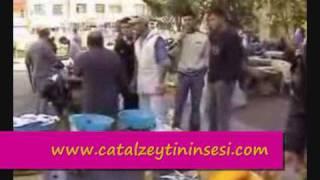 türkeli ilçesi videosu