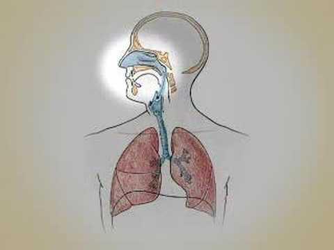 Tratamento de psoríase blyashechny de uma foto