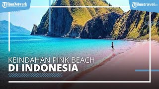 Keindahan 'Pink Beach' di Indonesia yang Eksotis Sekaligus Romantis, Cocok Buat Bulan Madu
