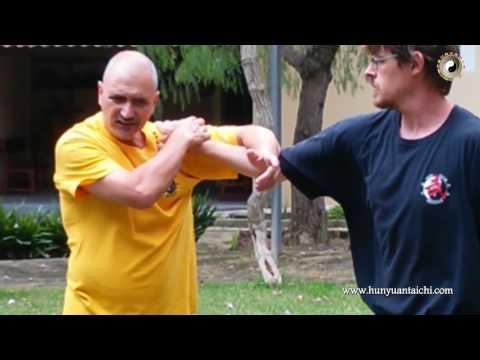 Técnicas de Qinna (llaves y luxaciones) y contra-Qinna