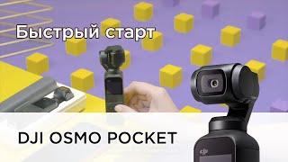 Osmo Pocket | Быстрый старт (на русском)