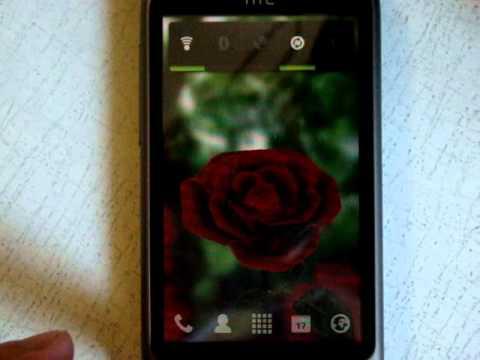 Vidéo La rose 3D (gratuitement)