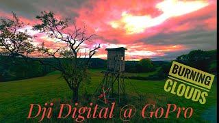 First Long Range || Armattan Badger || Dji FPV HD System || TBS Crossfire || Freestyle