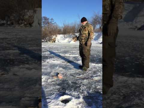 La mimetizzazione soddisfa per pescare e cacciare