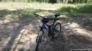 Покатался на велосипеде в Москворецком парке