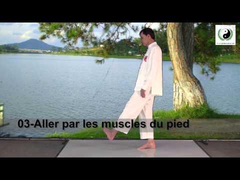Les muscles des abdominaux et le dos
