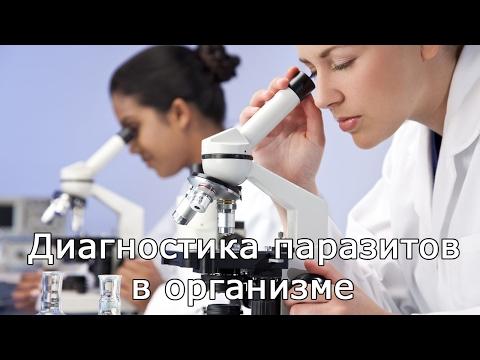 Лямблии и паразиты