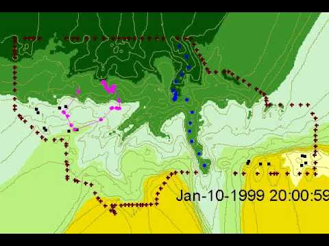 Tracking Cow Movement with GPS