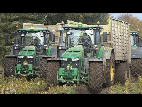 3x John Deere 8320R Working Hard in The Field During Corn Chopping Season 2019 | DK Agri