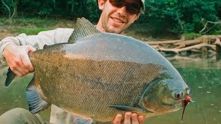10 River Monsters Caught in the Amazon