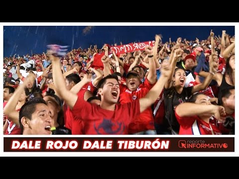 """""""Tiburones Rojos (Porra) Dale Rojo Dale Tiburón"""" Barra: Guardia Roja • Club: Tiburones Rojos de Veracruz"""