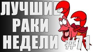ЛРН выпуск №71. ЮША ПРОТИВ ХРЮШИ [Лучшие Раки Недели]