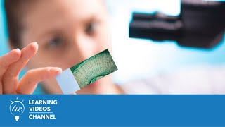 How to Prepare and Observe a Microscope Slide - More Lab Safety on the Learning Videos Channel