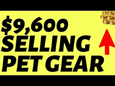 , title : '$9,600 Per Month Selling Pet Products Online (REPEATABLE)