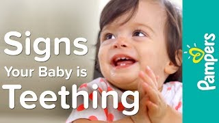 What Are the Symptoms of Baby Teething?