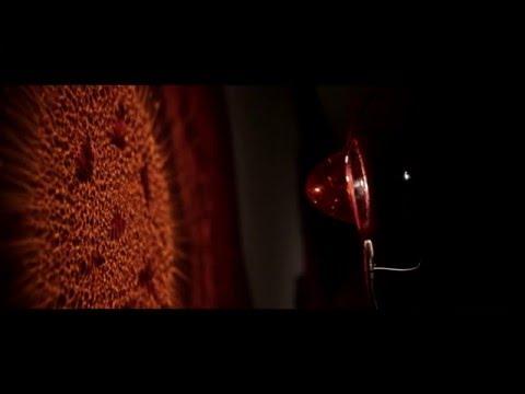 Hallucinations - Enzo Catellani