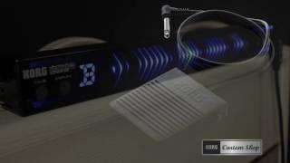 Korg PitchBlack PB05 - Video