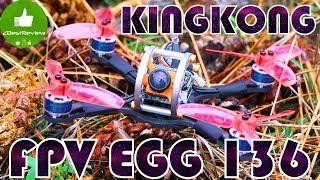 ✔ Обзор идеального FPV Квадрокоптера KiNGKONG FPV EGG 136mm! Banggood!