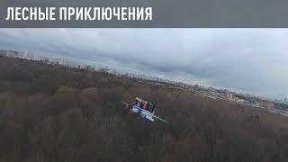 Лесные приключения. FPV Drone Adventures