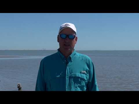 Texas Fishing Tips Fishing Report August 9 2018 Aransas Pass Area With Capt. Doug Stanford