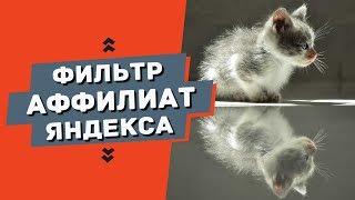Чем опасен аффилиат фильтр для сайта в Яндексе?