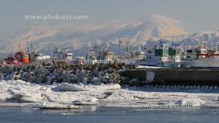 斜里港と流氷