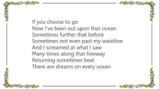 Chris Rea - If You Choose to Go Lyrics