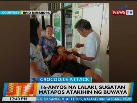 [GMA]  BT: 16-anyos na lalaki, sugatan matapos atakihin ng buwaya sa Balabac, Palawan