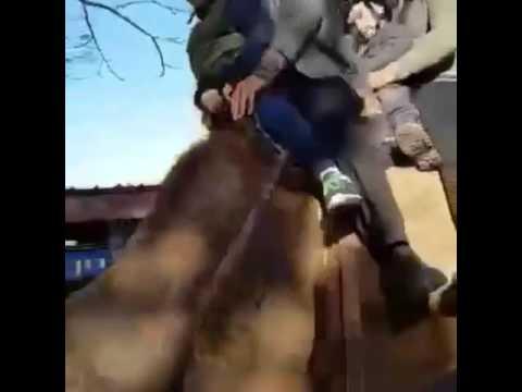 Video sul sesso Vikings