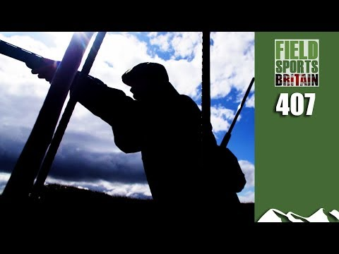 Fieldsports Britain – Fastest Birds You Can Shoot