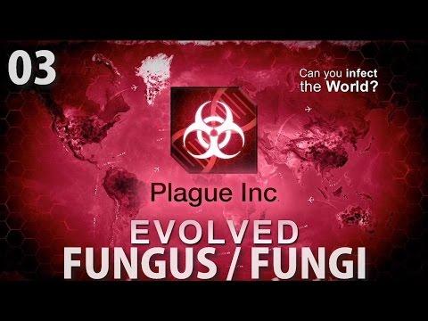 Comme guérir le microorganisme végétal le forum