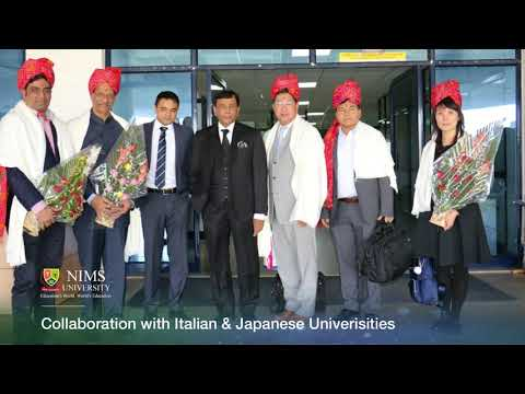 Collaboration with Italian & Japanese Univerisities