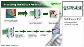 Gambar cover OriGene Webinar Series: TissueScan cDNA Arrays