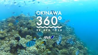 OKINAWA 360° -VR SEA TOUR-(沖縄)