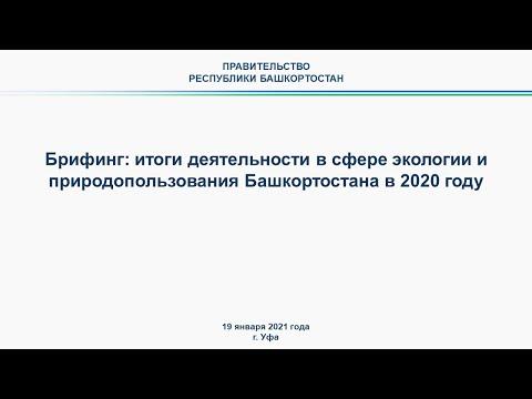 Брифинг: итоги деятельности в сфере экологии и природопользования Башкортостана в 2020 году