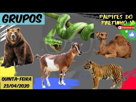 PALPITES JOGO DO BICHO 23/04/2020 PRETINHO JB