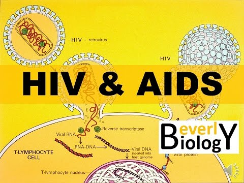 Video HIV and AIDS
