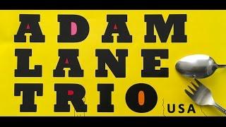 Adam Lane Trio - VinyllaSky set1 05