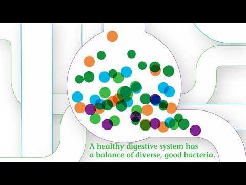 Nature's Bounty, Probiotic Gummies, Pineapple, Raspberry & Orange , 4 Billion Live Cultures, 60 Gummies
