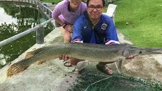 Day Ticket Fishing at Hua Hin Fishing Lodge