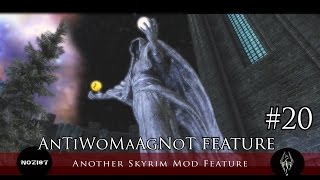 Another Skyrim Mod Feature #20