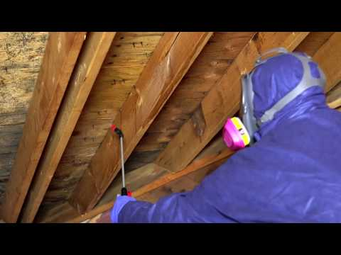 Mold-X2 Cleaner | Doug Lacey's Basement Systems
