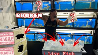 BOXES ARE DESTROYED!!!  UNBOXING TROPICAL FISH what DID WE GET IN?????? NEW CATFISH FOR THE SHOWTANK