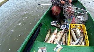 Рыболовная база в астрахани блесна