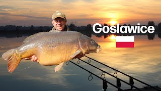 Carp Fishing   Goslawice   Poland 2018