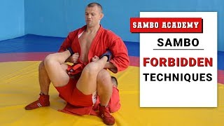 Illegal actions and techniques in sambo and combat sambo. Sambo rules FIAS
