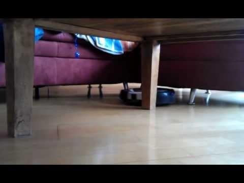 Sichler Saugroboter im Katzenhaushalt - prima unter der Couch