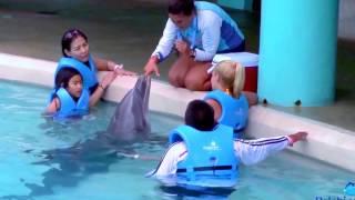 Interactive Aquarium Cancún, Cancun