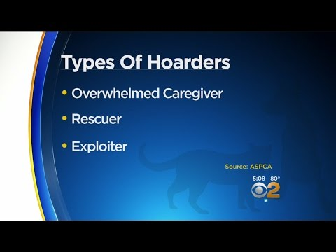 Types Of Hoarders