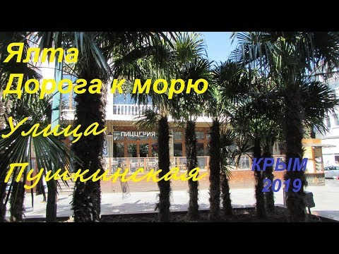 Ялта 2019, дорога к морю: улица Пушкинская 1 апреля. Пальмы, селфи, цветущая магнолия